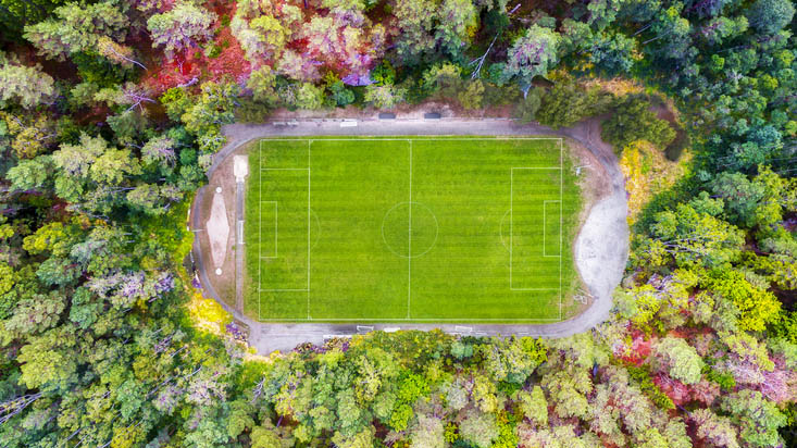 Football pitch surrounded by forest